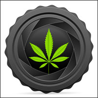 marijuana-life-insurance